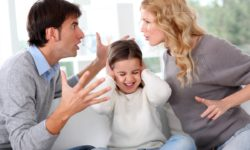 Raleigh Divorce and Family Lawyer